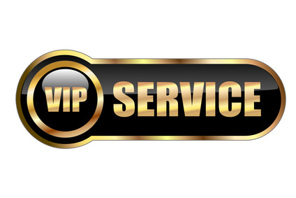 Vip Services - Hire in Italy - Transfer - Tours